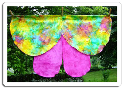 Dress Up Costume Butterfly Wings